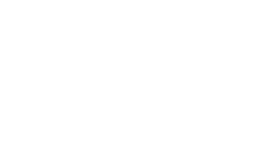 BOLD [digital workshop]